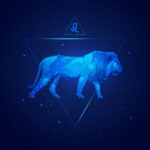 Chocastro – Lion